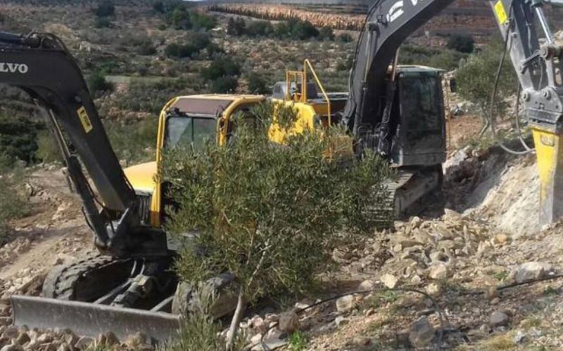 Excavación en Málaga